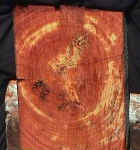 Reclaimed Heart Pine Beam Cross Section